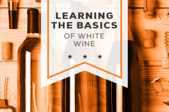 Learning the Basics of White Wine